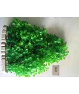 Plant 1110
