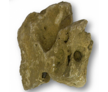 faye rock 1 kg